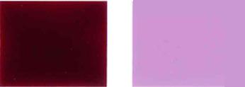 Pigment-násilný-19-Barevný